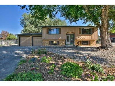 Loveland Single Family Home For Sale: 2204 Ulmus Dr
