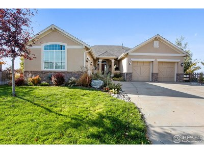 Broomfield Single Family Home For Sale: 5135 Foxglove Trl
