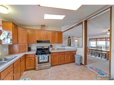 Brighton Single Family Home For Sale: 15665 Havana Way