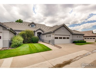 Longmont Condo/Townhouse For Sale: 4111 Da Vinci Dr