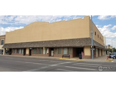 Commercial For Sale: 129 N 3rd St
