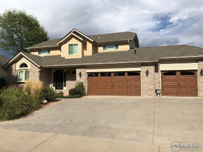 Longmont Single Family Home For Sale: 1742 Sunlight Dr