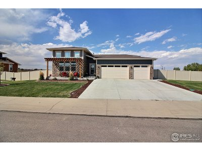 Greeley Single Family Home For Sale: 9111 18th St