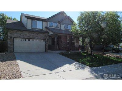 Longmont Single Family Home For Sale: 7228 Prairie Cir