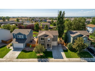 Fort Collins Single Family Home For Sale: 4009 Celtic Ln