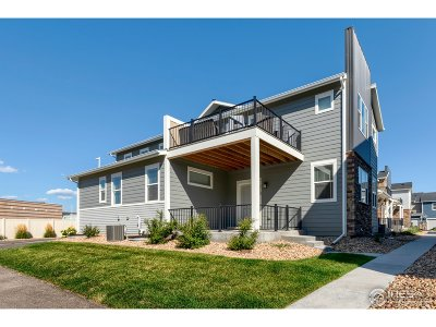 Longmont Condo/Townhouse For Sale: 713 Robert St