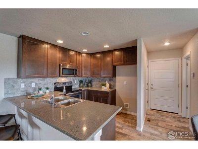 Frederick Condo/Townhouse For Sale: 6117 Verbena Ct #101
