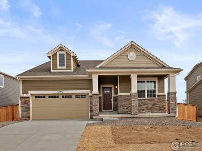 Broomfield Single Family Home For Sale: 17076 Navajo St