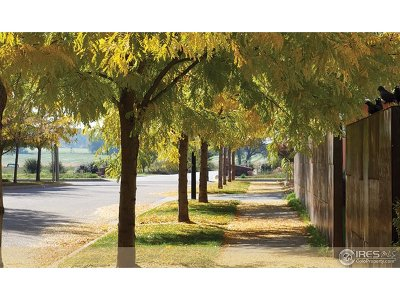 Longmont Residential Lots & Land For Sale: 918 Half Measures Dr