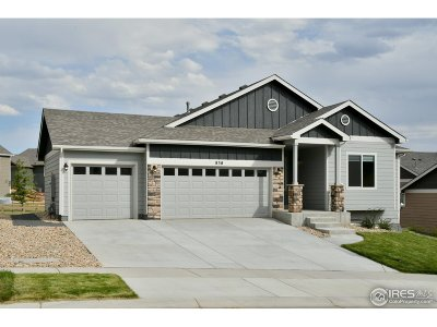 Berthoud Single Family Home For Sale: 838 Canyonlands St