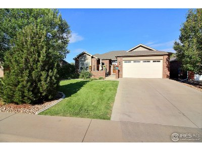 Greeley Single Family Home For Sale: 451 46th Ave