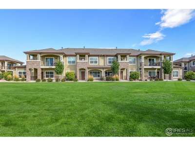 Fort Collins Condo/Townhouse For Sale: 3826 Steelhead St #D