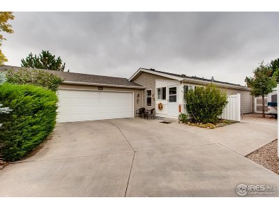 Fort Collins Single Family Home For Sale: 749 Sunchase Dr
