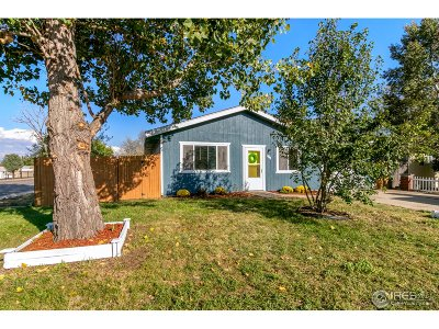 Greeley CO Single Family Home For Sale: $239,900