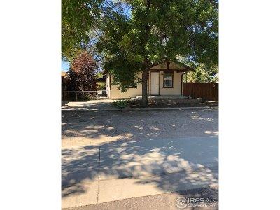 Hudson Single Family Home For Sale: 243 Birch St