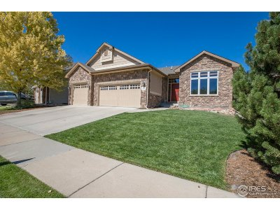 Fort Collins Single Family Home For Sale: 3538 Green Spring Dr