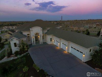 Single Family Home For Sale: 413 Horizon Cir