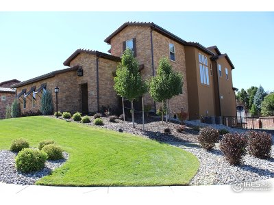 Lone Tree Single Family Home For Sale: 9343 Vista Hill Ln