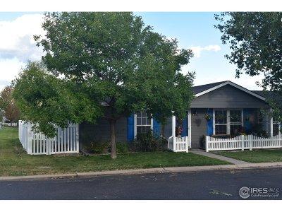 Frederick Single Family Home For Sale: 6281 Audubon St