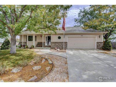 Loveland Single Family Home For Sale: 756 Milner Ct