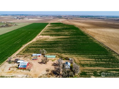 Greeley Farm & Ranch For Sale: 21417 County Road 66