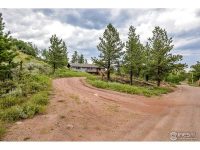 Larimer County Single Family Home For Sale: 193 Tiny Bob Rd