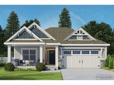 Johnstown Single Family Home For Sale: 301 Alder Ave