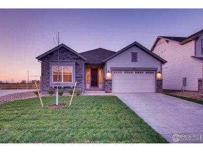 Longmont Single Family Home For Sale: 2353 Flagstaff Dr