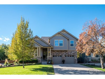 Longmont Single Family Home For Sale: 1605 Bluefield Ave