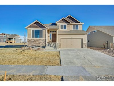 Greeley Single Family Home For Sale: 8759 16th St