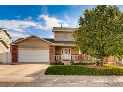 Johnstown Single Family Home For Sale: 165 Buckeye Ave