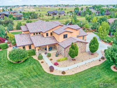 Longmont Single Family Home For Sale: 8712 Portico Ln