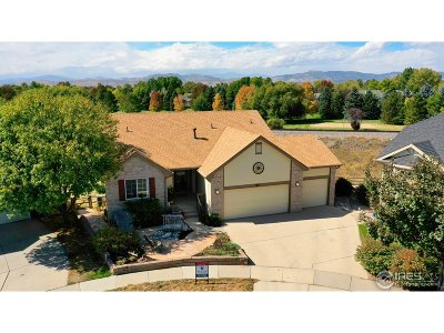 Single Family Home For Sale: 1802 Thyme Ct