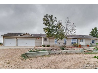 Fort Lupton Single Family Home For Sale: 4373 Falcon Dr