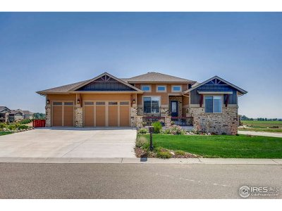 Fort Collins Single Family Home For Sale: 304 Duesenberg Ln
