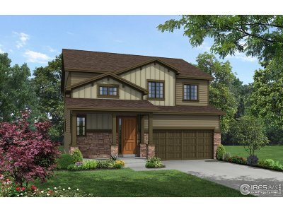 Loveland Single Family Home For Sale: 123 Anders Ct
