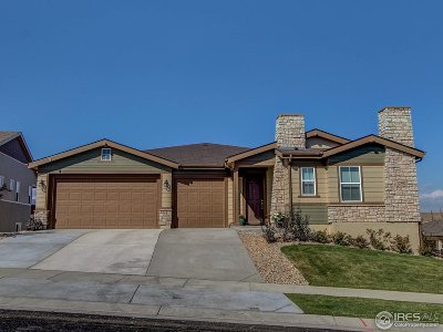 Skyestone Single Family Home For Sale: 12982 Elkhorn Cir