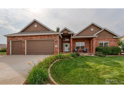 Fort Collins Single Family Home For Sale: 5902 Snowy Plover Ct