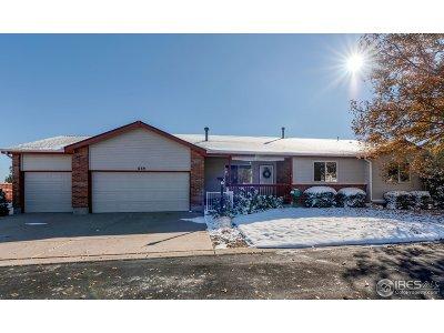 Loveland Single Family Home For Sale: 669 Radiant Dr