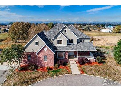 Henderson Single Family Home For Sale: 12894 E 116th Ct
