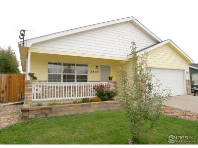 Evans Single Family Home For Sale: 2607 Park View Dr