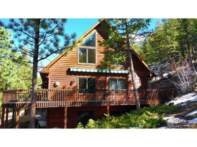 Estes Park Single Family Home For Sale: 640 Audubon St