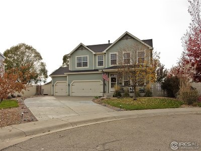 Firestone Single Family Home For Sale: 11247 Cimarron St