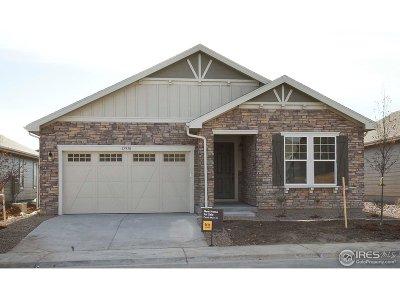 Thornton Single Family Home For Sale: 15938 Detroit St
