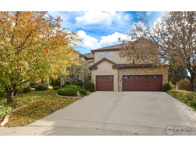 Fort Collins Single Family Home For Sale: 7256 Carner Ct