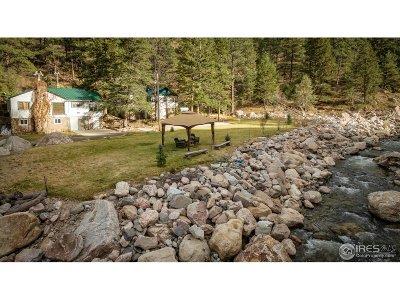 Drake Single Family Home For Sale: 290 River Fork Rd