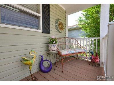Single Family Home For Sale: 657 Brandt Cir
