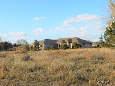 Sterling Single Family Home For Sale: 115 Hillside Dr