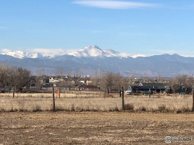 Longmont Single Family Home For Sale: 6325 County Road 20