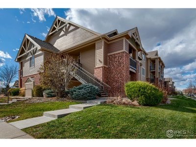 Fort Collins Condo/Townhouse For Sale: 2133 Krisron Rd #B204